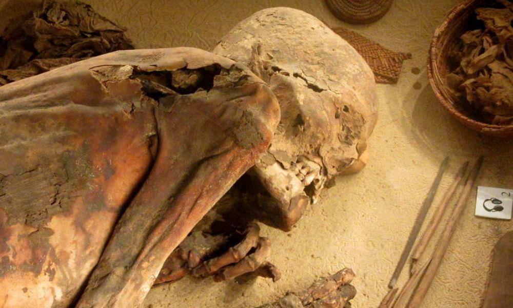 Мумия на 5 6000 години разгадава египетската формула за балсамиране