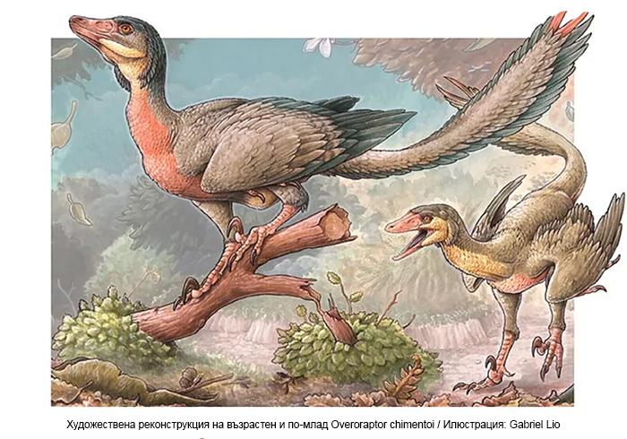 В Патагония е открит малък месояден динозавър