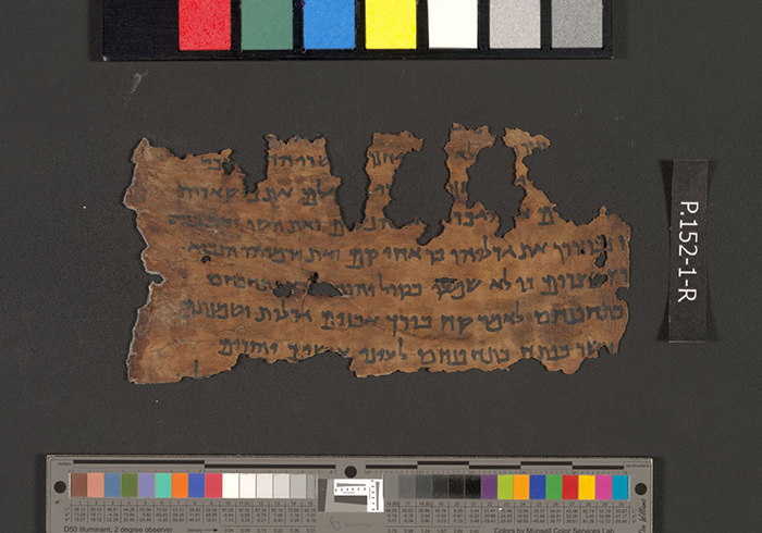 ДНК анализът на свитъците от Мъртво море